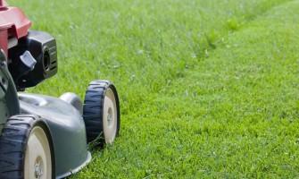 9 неща, за които трябва да помислите, преди да косите тревата за първи път през тази година